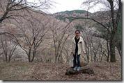 2016.04.10吉野山的櫻花。