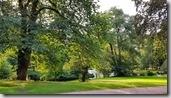 20170903_挪威皇宮的庭園1