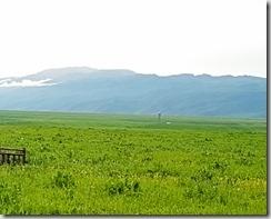 20180617_164849美麗的那拉提草原。