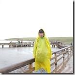 20180618_100711天鵝湖保護區,穿雨衣拍照真的很醜。