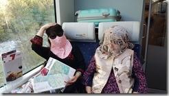 20190501_094047冰河列車上王媽媽對抗驕陽奇景--進化版