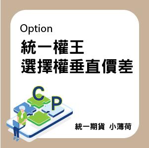 選擇權-文章圖片-01.jpg