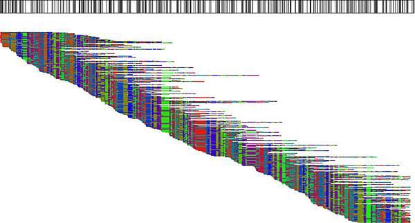 opticalmapping5.jpg