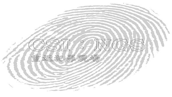 CSI 重返犯罪現場  NGS