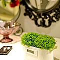 設計小物-植物時鐘3