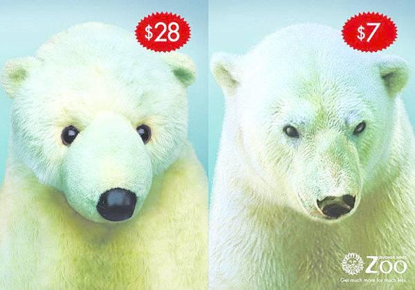 「花費更少,見識更多」 — 阿根廷布宜諾斯艾利斯動物園