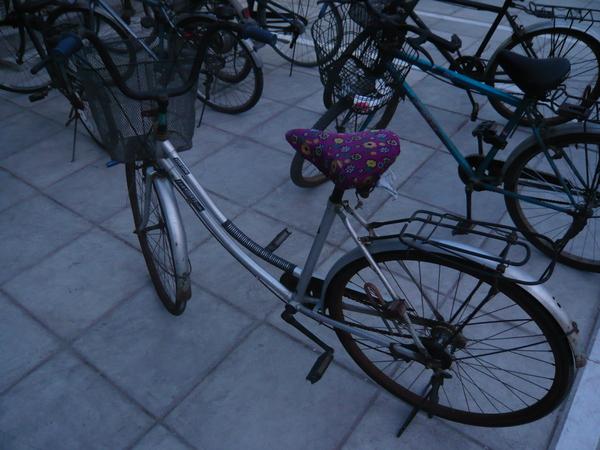 熊阿姨的小學同學送的腳踏車