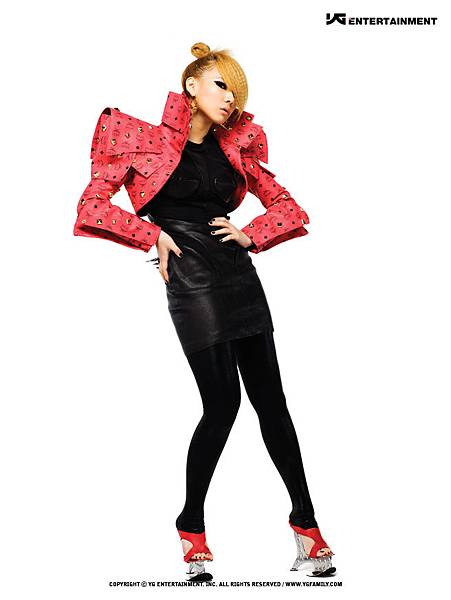 gallery_2ne1_1st_album_16