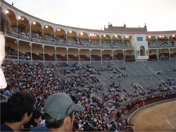 23-Bullfighting.jpg