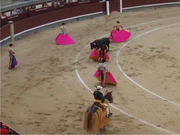 24-Bullfighting.jpg