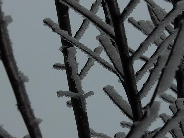 是冰還是霜的? Freezing cold!