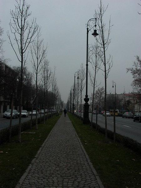 我很愛的街