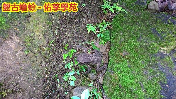 2015-09-03-21-13-34_deco[1].jpg