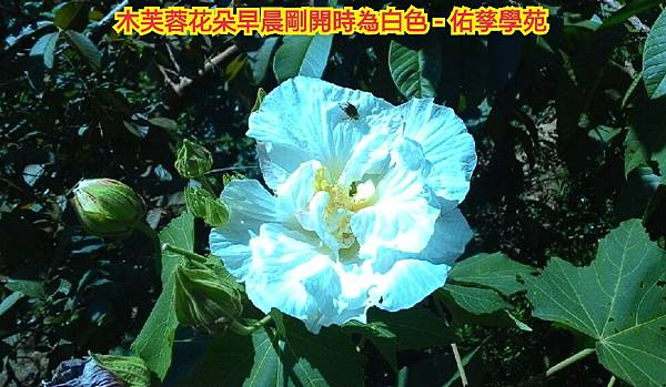 15-10-18-14-20-05-720_deco.jpg