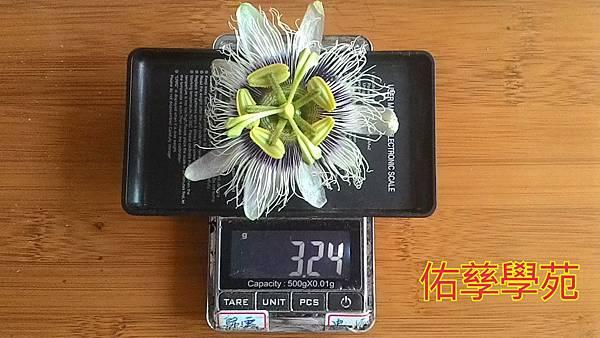 15-11-06-15-13-18-284_deco.jpg