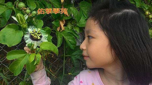 15-11-06-15-40-39-675_deco.jpg