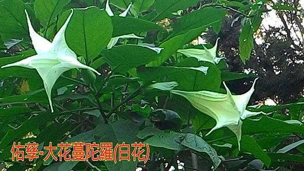 15-11-11-10-02-34-948_deco.jpg