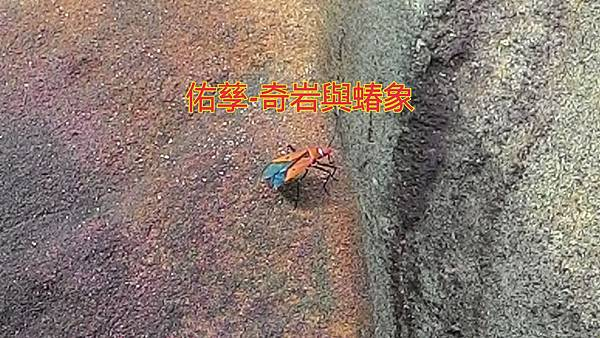 16-01-13-16-15-18-884_deco.jpg