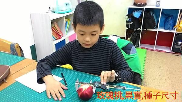 16-03-10-12-47-12-524_deco.jpg