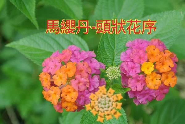 16-04-02-23-04-04-172_deco.jpg