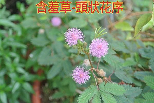 16-04-02-22-49-33-650_deco.jpg