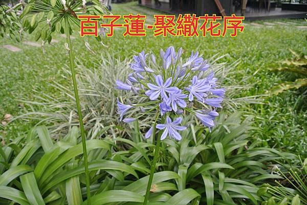 16-04-03-14-10-29-111_deco.jpg