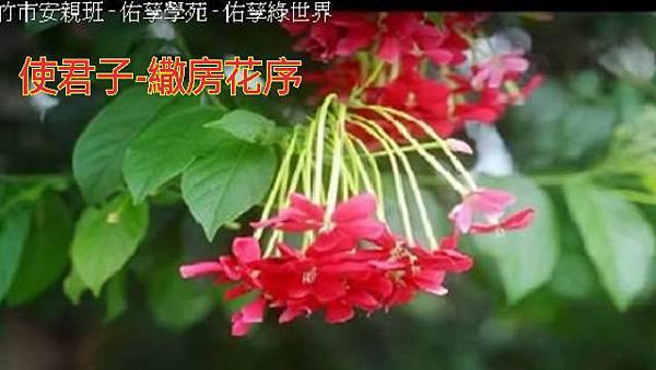 16-04-03-23-56-01-770_deco.jpg