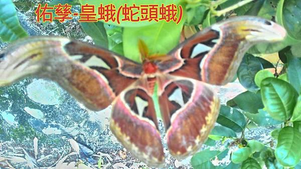 16-05-01-10-49-17-973_deco.jpg