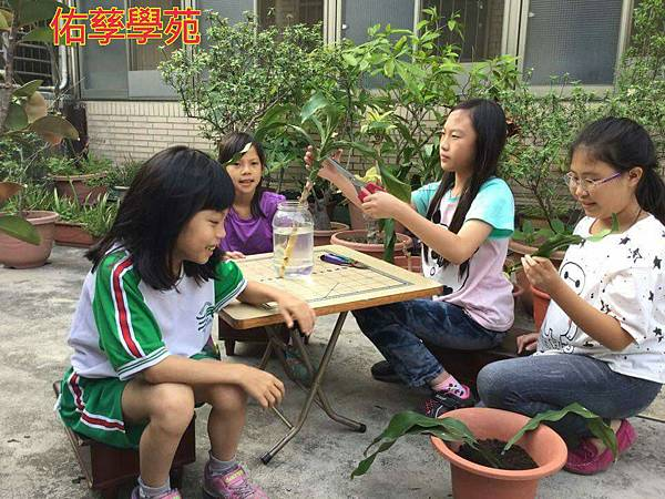16-05-19-09-03-35-003_deco.jpg