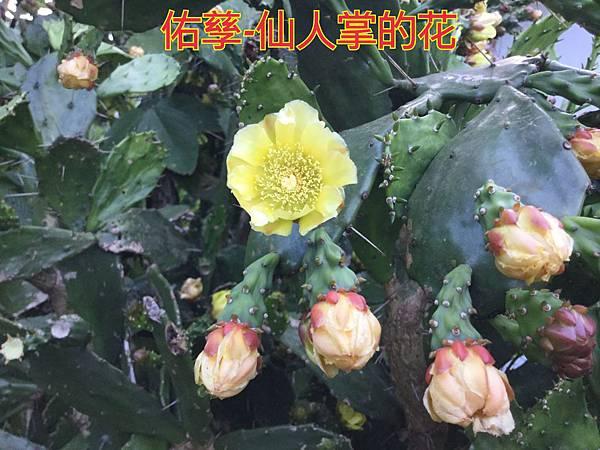 16-05-30-09-40-18-046_deco.jpg