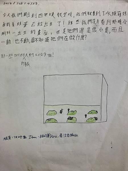 IMG_E1910.JPG
