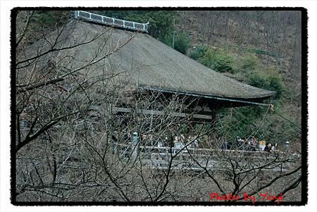 2011.02.25.清水寺05.JPG
