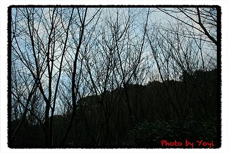 2011.02.25.清水寺07.JPG