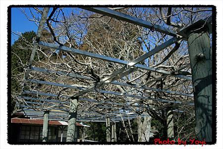 2011.02.26比叡山09.JPG