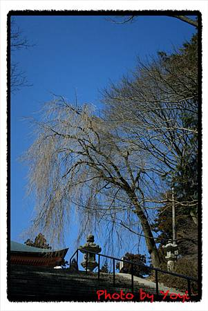2011.02.26比叡山18.JPG
