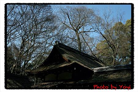 2011.02.26下鴨神社05.JPG