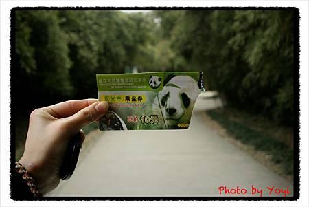 2012.02.26熊貓基地05