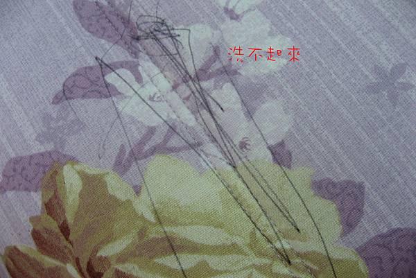 IMG_0524P02