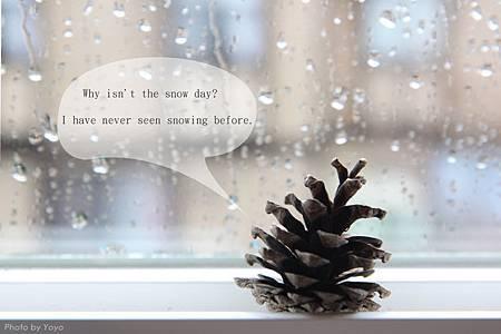 rainday