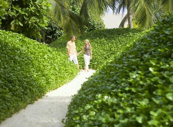 調整大小Pathway_to_the_Spa_treatment_villas_in_the_island_Spa_retreat_-_Spa_by_Mandara.jpg