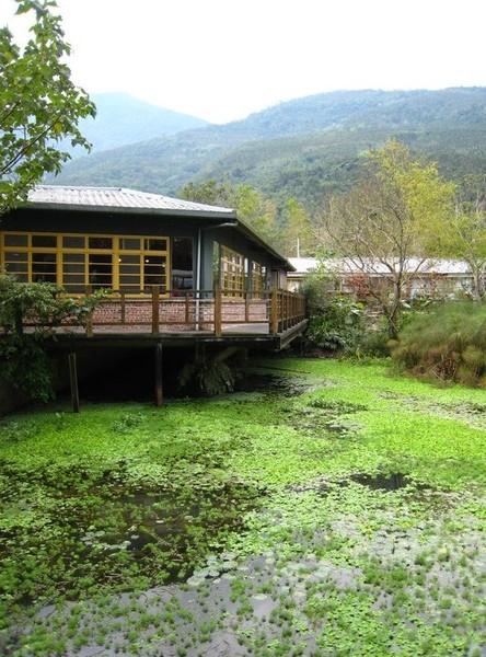 馬太鞍欣綠農場