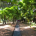 p_IMG_0023.jpg