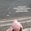 p_0923_i_2012-09-23 16.19.45