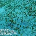 p_IMG_2144_Snapseed.jpg