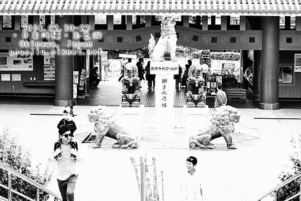 Z_IMG_1934_Snapseed_Snapseed.jpg