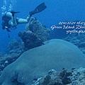 20101001 (2) 六米礁 p_IMG_3309.jpg