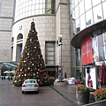 20081126 聖誕樹02