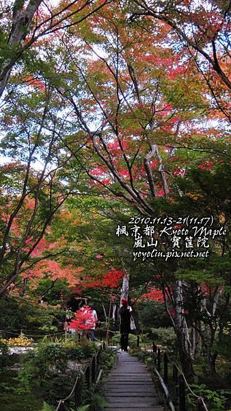 p_IMG_5199.jpg