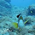 20101001 (2) 六米礁 p_IMG_3327.jpg