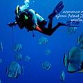 20101002 (1) 鋼鐵礁 p_IMG_3355.jpg